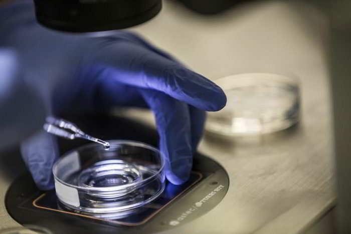 Préparation du sperme insémination artificielle