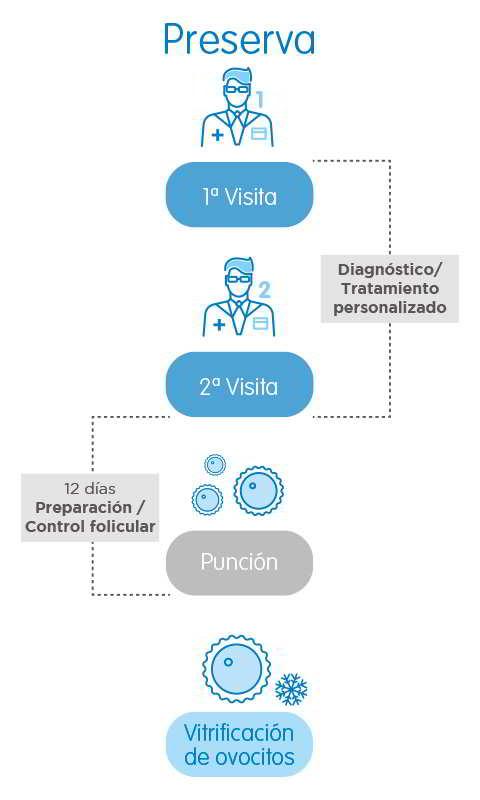 infographie préservation de la fertilité