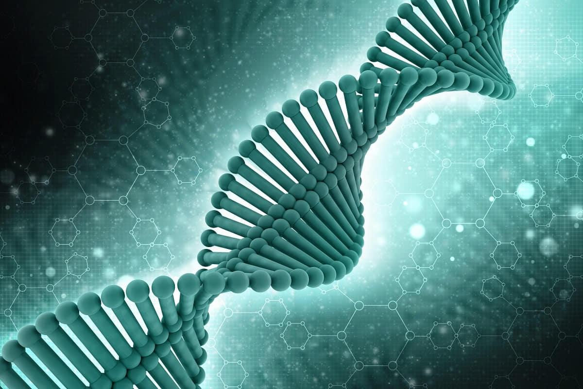 Qu'est-ce que le syndrome de l'X fragile? Comment le PGT peut-il vous aider à le détecter?