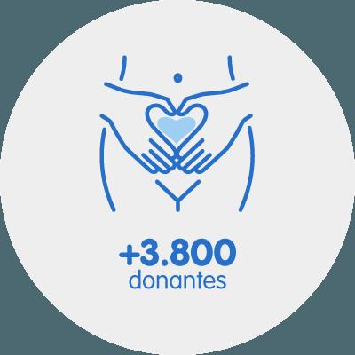 Sélection optimale des donneuses