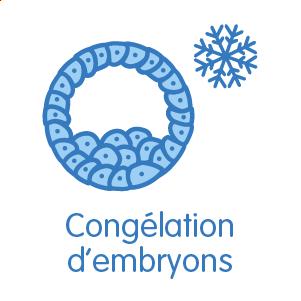 Congélation des embryons surnuméraires